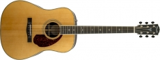 Fender PM-1 Std Dreadnought, NAT